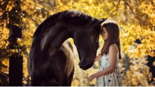 Прогулки на лошадях от конного двора «Космос» в Митино! А еще романтическая или квест-прогулка на лошадях и фотосессия!