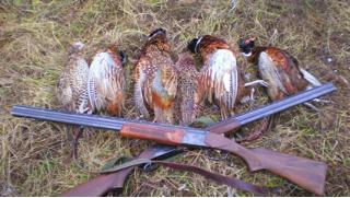 Купоны развлечения! Охотничий тур в течение 2 дней/1 ночи! Программы на выбор: «Стрельба по тарелкам» или «Охота на фазана»!
